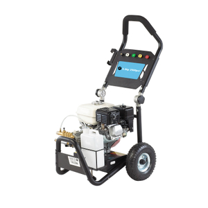 5.5HP Petrol Portable High Pressure Washer Machine 2900PSI